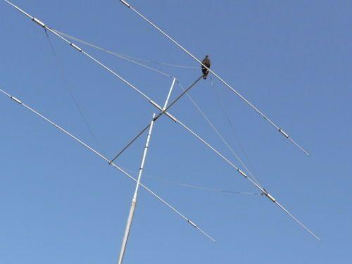 WA8ZPN's Remote Antenna Tuner I